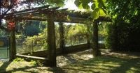 A grape arbor is a beautiful structure found in a garden that allows the grapes to vine around. When the grapevines have completely taken over the structure, it