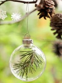 Preserving your previous years' REAL trees by dipping a piece in wax then inserting in clear ball. Etch the year in the glass or paint or tag it. If only we did real trees...