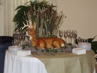 3-D buck deer - Cake was made using Janette Pohlman's deer kit and instructions. www.pohlmanscakes.com , click on animal kits. The body is cake, the head is a form. All is iced in buttercream and airbrushed. Many times guests do not realize it is a ca...