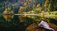 Beautiful Autumn Lake View Wallpaper