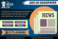 Now, publish matrimonial, business, classified and display Ads in Newspaper at the affordable prices. TheMediaCat can help you publish Advertisement in Newspaper usually classified text ad and reach out to the targeted audience. For more details please vi...
