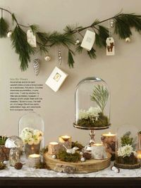 Christmas Ideas 2013 | Suzonne Stirling Photo by Brie Williams