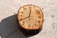 Easy DIY Sundial. All you need is a log slice, nail, and a sharpie.