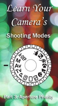 Shooting Mode: Part 3 - aperture priority | Boost Your Photography