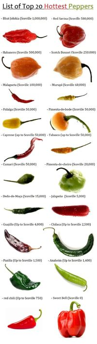 """List of Top 20 Hottest Peppers via """"Alternative Gardning."""" Most pepper varieties thrive in a hydroponic setup."""