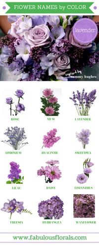 Purple flowers come in so many shades and are considered one of the most popular colors in flowers. Purple has always been considered a sign of royalty and will