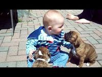 This may just be the cutest kid/puppy video I have ever seen!!!