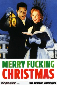 Merry f*cking Christmas sarcastic humor #sarcasm #sarcastichumor #Christmas #ChristmasHumor #funny #humor #PMSLweb
