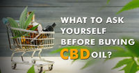 buy cbd oil in india For more details connect us on - https://www.hempstrol.com/