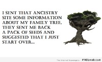 Ancestry website humor