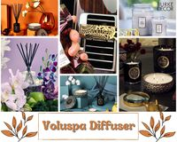 https://www.burkedecor.com/collections/voluspa-candles