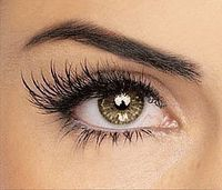 "If you dream about having long, lush eyelashes, leave the makeup counter and come home. There is a way to help boost your eyelash �€"" and even eyebrow �€"" growth wi"