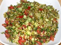 Mixed Sprouts Salad