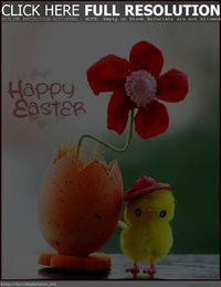 Happy Easter cute photo