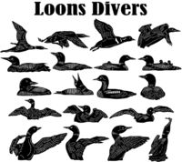 Loons Divers Just for: $49.50