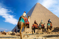 Explore Egypt tour package and book your Egypt tours at best prices with Golden Egypt tours. Get all exclusive deals on Egypt holidays packages. Experience your beautiful top Egypt tourist attractions with our services that include personal guides.
