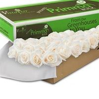 100 White Roses from Costco, $79.99. Customer reviews seem to be great too. A definite possibility.
