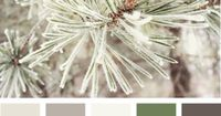 Yes, I think this would be pretty...as previously posted: Beautiful, simple color palate for any season...I am thinking grey pants, green sweater, with white and pewter accessories