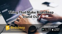 Thing That Make BirdsBeep Stand Out