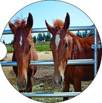 2 Absorbent Car Coasters of Horses #11. Car Accessories for her, Auto Coaster, Coaster, Cup Holder Coaster, Gift For Her, For Him $14.00