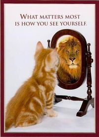 What matters most is how God sees me. He sees me as a joint heir of Jesus Christ a lion of Judah and an adopted kid of the creator of the universe my Abba Father, Poppa God, Poppa Jah. I am a reflect of Him. Thus this picture IS correct.