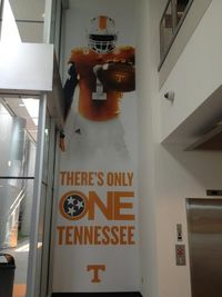 There's only one Tennessee Go Vols!