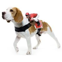 Jockey Dog Rider Pet Costume Now your pup will be ready for the Kentucky Dog Derby! Details 4 STARS $26