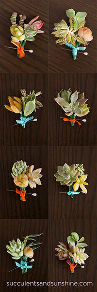 HOW TO MAKE SUCCULENT BOUTONNIERES FOR YOUR DIY WEDDING
