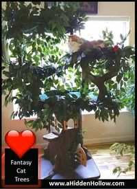 Large Cat Trees for Large Cats