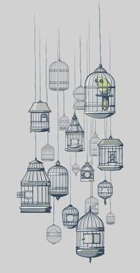 birds in a cage illustration