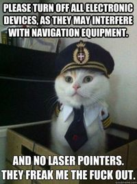 See more 'Captain Kitteh' images on Know Your Meme!