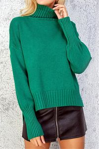 Pavacat Solid Color High Neck Sweater $38.00