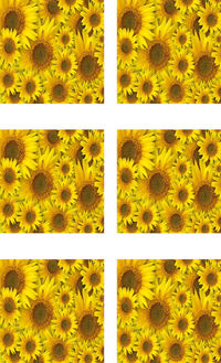 Fabric Panel Sunflowers Multiple Sizes Available. Flowers Poly Quilt Fabric Crafts Quilts, Quilters, Patchwork, Sewing Quilting $7.95