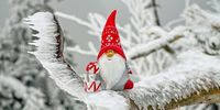Making the Most Out of the Holiday Season with SEO