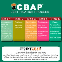CBAP Certification Process://www.sprintzeal.com/course/cbap-certified-business-analysis-certification-training