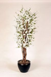 This is a fake plant, but it's the right idea. Potted dogwood tree for spring wedding decor!
