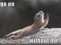 I know some people more dramatic than this chipmunk.