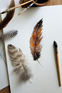 The manner in which watercolor spreads onto the paper makes painting a feather a great beginner's project. Create various looks by simply altering colors.