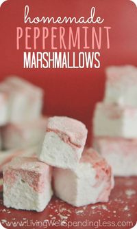 I'll be honest, I'm not normally a big fan of marshmallows. My girls, on the other hand, can't get enough of them, and when I saw they were charging $16.95 at W