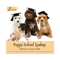 Puppy School Sydney