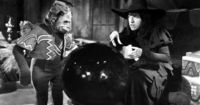 I had recurring nightmares about flying monkeys getting into my room while I slept.
