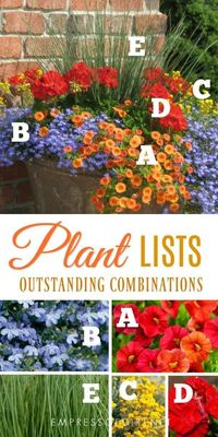 TwitterFacebookPinterestEmailWant to know the secret to beautiful garden containers? These plant lists tell you exactly which plants you need to create these ey