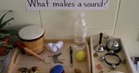 Find more science ideas on the Science Resource Page This was a project we did in my class in Spring 2007 when the children became interested in sounds. This pr
