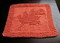 dish cloth, knitting and cloth.