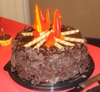 Campfire cake for Eagle Court of Honor. The Happy Heart