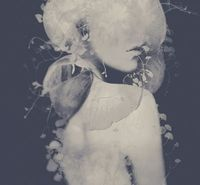 Ego & Lavish Languish by Leslie Ann O'Dell, via Behance