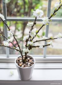 Creative lifestyle expert Lia Griffith shows you how to make these gorgeous spring-inspired blooming branches for your home, party, or wedding decor!