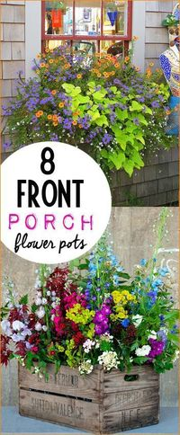 Flower pots for your front porch. Perfectly potted plants to bring color to your home. Tips and tricks to keeping plants thriving all season long.