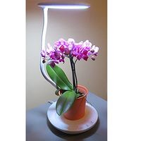 Buy Multi-Function LED Desktop Plant Lamp with White UL Adapter from Mr.Light. This multifunction lamp can be used as either a desk lamp or a plant lamp. https://goo.gl/QRBJH4
