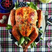 A perfectly cooked turkey is just a few hours (and ingredients) away.
